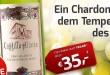 12er Paket Castillo Alonso - Chardonnay bei Weinvorteil