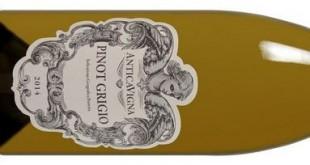 Pinot Grigio bei Weinvorteil